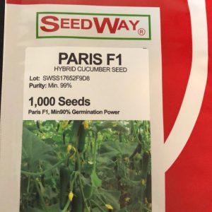 بذر خیار گلخانه ای پاریس